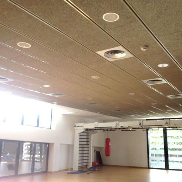 techo de viruta de madera para un gimnasio, obra de Dimaplac
